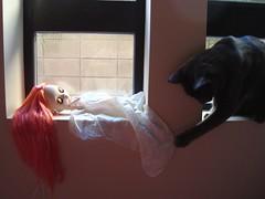 Wyatt won't leave this doll alone!