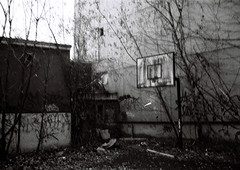 basketballplatz - teufelsberg (_eRik_) Tags: world lynch cold berlin basketball analog germany army war force control minolta grafiti raum cia air inspection hauptstadt ruin security krieg frieden ruine national agency universitt asa electronic monitoring command luft gebude radar raf armee netz charlottenburg verlassen destroy berwachung echelon korb amerikanisch nsa bugging supervision teufelsberg maharishi britisch sicherheit verfallen vandalismus fakultt teufelssee kalter sowjetunion deponie aufklrung spionage abhranlage usasa trmmerberg vedische wehrtechnische
