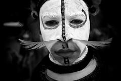 Young Huli Boy (Dave Schreier) Tags: new boy festival guinea mt feather tribal tribe papua hagen huli