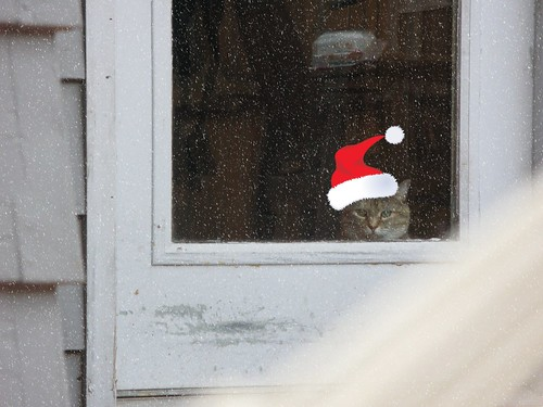 matea_deck_door2_christmasmod