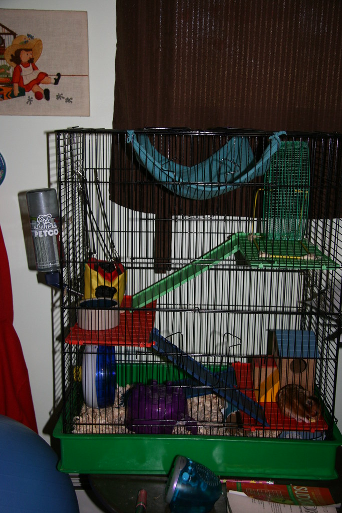 As per request- photo of Squeaky's cage