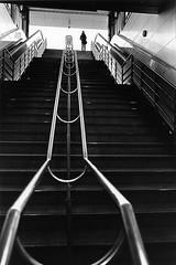 步步高升-2008-捷運市府站.jpg