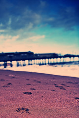 (julian fraser photography) Tags: sea sky cloud cold beach pier seaside sand crossprocess footprints devon f28 pawprints teignmouth 2470mm d700