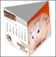 Hamster 2010 3D Calendar (January to April)