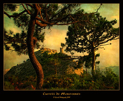 0268 Castell de Montorns (QuimG) Tags: castle canon geotagged spain europe favorites textures castillo castell pasvalenci benicssim thepyramid desertdelespalmes castelldemontorns topseven specialtouch castelldelaplana theunforgettablepictures diamondstars quimg betterthangood poblesdecastelldelaplana photoshopcreativo thedavincitouch worldsartgallery tumiqualityphotography quimgranell joaquimgranell genieslight reservaespecial worldmesartmasters jotbesgroup showthebest yourwonderland finestimages themasterlightpainter thelightpainterssocietygold mesarthonorablemembersgroup 2mmsroyalstation theamazingphotos imagofabulae thephotoprofessionals magiayfotografia therenaissancetouch ilfilodarianna thelittlebookoftreasures