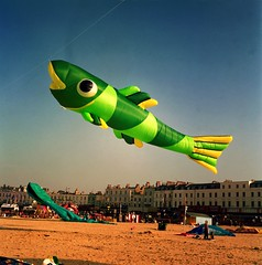 Fish. (DJ Bass) Tags: blue fish green 6x6 beach catchycolors air kites margate giantkites 25faves mymargate