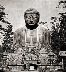 The Great Buddha of Kamakura (1880s) (ookami_dou) Tags: statue japan buddha kamakura daibutsu  amida  amitabha  lanternslide ktokuin jlevy