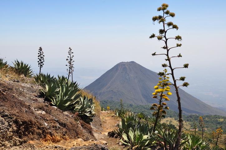 Parque los Volcanos, Cerro Verde, Santa Ana, Izalco