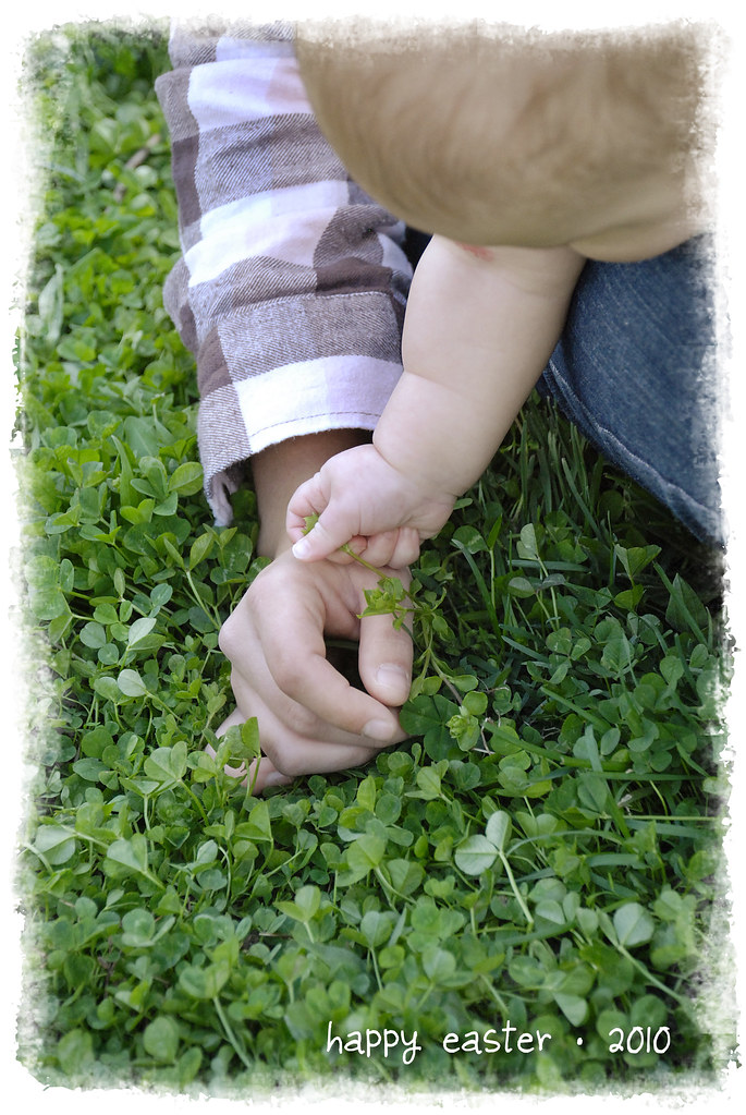 baby hands reaching clover grass park