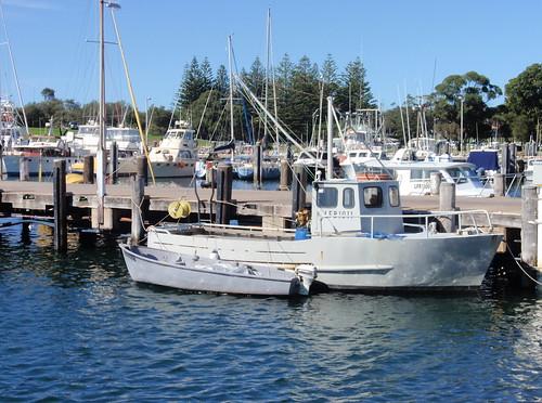 Bermagui boats