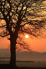 SUNRISE IN PORTHMADOC 2 (ERICINWALES) Tags: trees red sun mountains cold misty warm branches frosty glowing northwales porthmadoc