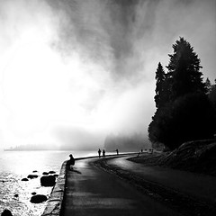 Opening up. (* Ahmad Kavousian *) Tags: morning fog explore stanleypark explored explore14 byahmadkavousian beeninflickrexplorepage