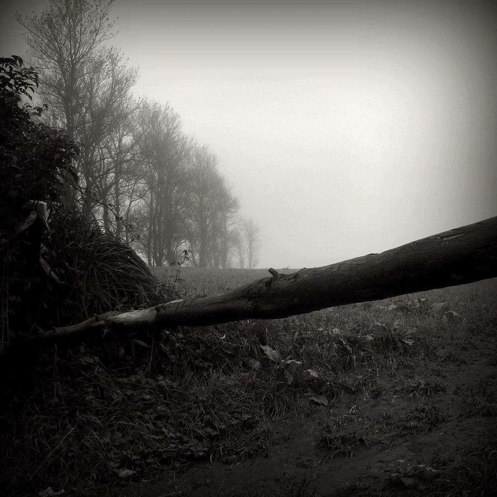 Winter #P1220769