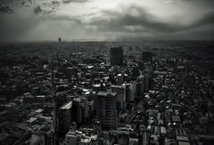 Tokyo 1699 (tokyoform) Tags: city sunset sky urban japan skyline architecture clouds 350d japanese tokyo asia cityscape skyscrapers ciudad tquio stadt  bleak  japo japon ville setagaya tokio stadtbild paisajeurbano  japn   japonya  nhtbn paysageurbain jongkind           chrisjongkind   tokyoform