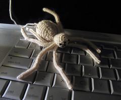cashmere spider 1