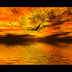 THE BIRDS (DEVENDRA PAL(AWAY)) Tags: sunset sky sun india nature water birds yellow river photography photo alfred hitchcock pal devendra blackred topseven thesuperbmasterpiece
