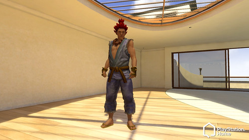 PlayStation Home Akuma Costume