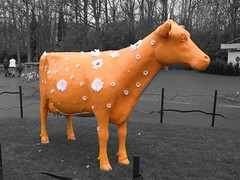 Painted Cow in Keukenhof Gardens, Holland