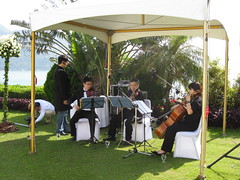 Musicians at Gordon & Mona's Wedding