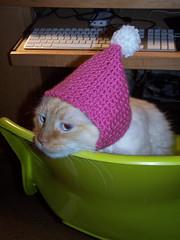 Marshmallow hat