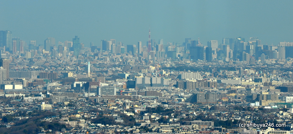Tokyo skyline visible far away.