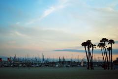 Long Beach, California (jami_lee) Tags: california sunset sky cloud beach boats dock palmtrees longbeach