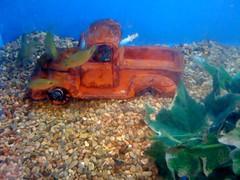 Underwater truck