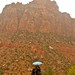 Mt. Zion National Park, Where It Rained