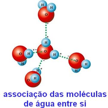 Associação entre as moléculas de água