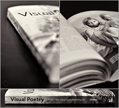 (039/365) Visual Poetry: Triptych