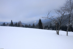 umava (Pavel Vanik) Tags: winter nature canon eos czechrepublic bohemia 30d umava bohemianforest 1755is modrava