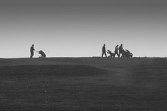 First round (moggsterb) Tags: blackandwhite bw golf horizon round golfers golfclubs project365 golftrolley p365 roundofgolf aroundofgolf p36519 msh02101 msh0210 golftrollies p365mgb