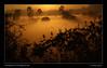 Sea of fog. (Neo-grapher) Tags: silhouette sunrise landscape bangalore belandur bellandur bellandurlake naturessilhouettes malayalikkoottam peopleenjoyingnature dpssilhouettes