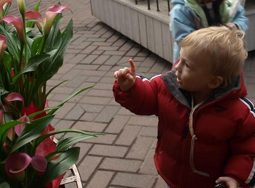 flowershop 012