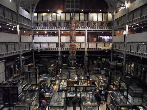 Pitt-Rivers Museum of Anthropology