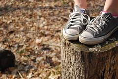 (B.Peace Photography) Tags: chucks treestump laces chucktaylors