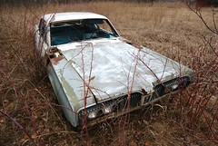Forlorn (Mr Perry) Tags: ford mercury rusty oxidation cougar sigma1020mm simcoecounty pentaxk10d