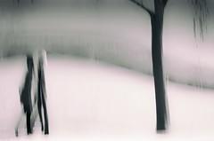 Winter Walk (Branko Mikich) Tags:
