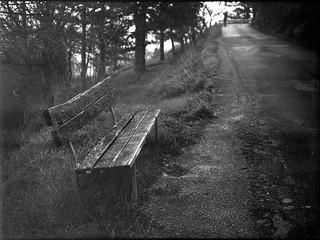 old wooden bench, roadside, Cortona, Tuscany, Italy, Mamiya 645 Pro, Mamiya Sekkor 80mm, Fomapan 200, R5 Monobath Developer (underexposed, pushed), early January 2017