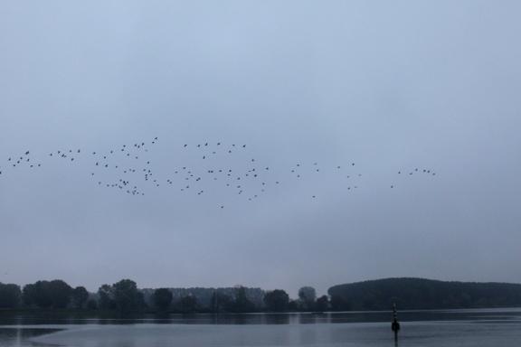 mantova in morning fog