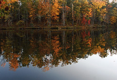 Crystal Lake (bdaryle) Tags: autumn trees red lake green fall nature water leaves yellow reflections fallcolor sony brandondaryle bdaryle imagesbybrandon
