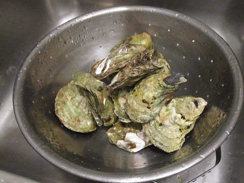 12 oysters from Marché Maisonneuve, $25