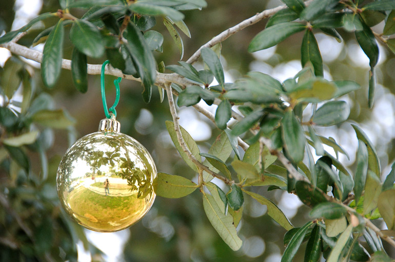 ornament_0030
