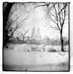 majestic city (scott w. h. young) Tags: park nyc newyorkcity trees winter sky snow 120 film mediumformat san apartments kodak manhattan trix central diana 400 dianaf remo 38mm