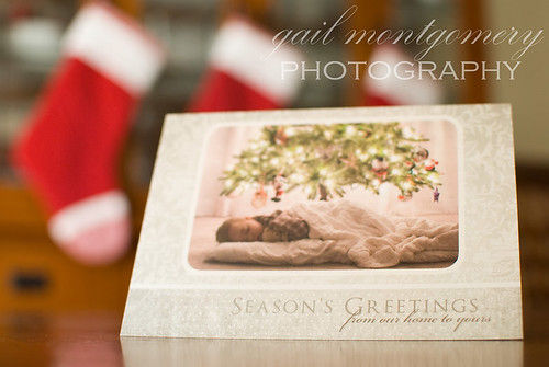 Baltimore Maryland Baby Child Family Photographer custom Holiday Card