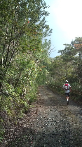 2010 OSJ奄美ジャングルトレイル
