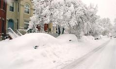 snow cars?