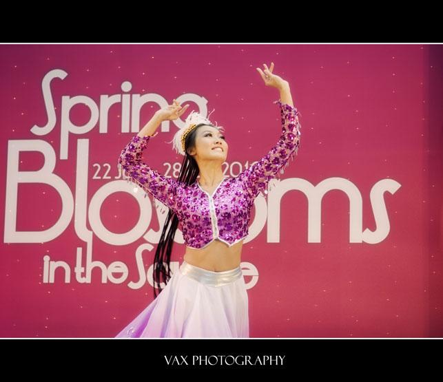 spring blossoms 003