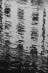 1561 (Luis Alfaro) Tags: florence italia davinci tuscany florencia firenze leonardo piazza duomo uffizi toscana michelangelo miguelangel renaissance brunelleschi vecchio giotto renacimiento