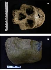 Tecnología de los primeros humanos europeos